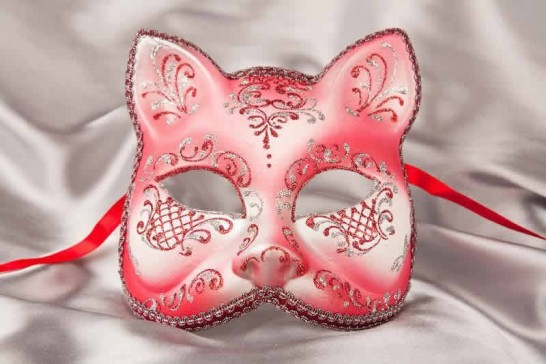 Red Silver Cat Mask for Animal Masquerading
